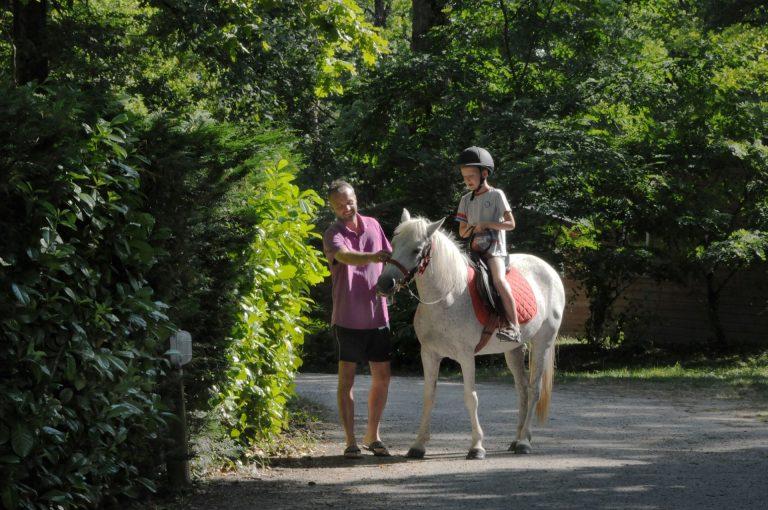 Parc De Fierbois : Poneys (6)