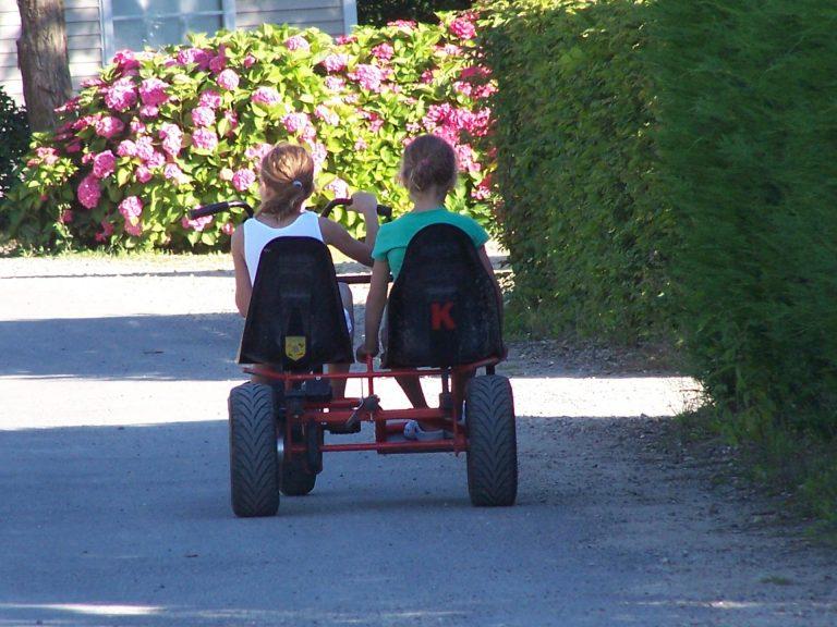 Parc De Fierbois : Kart à Pédales (3)