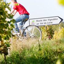 Parc De Fierbois : Route Des Vins