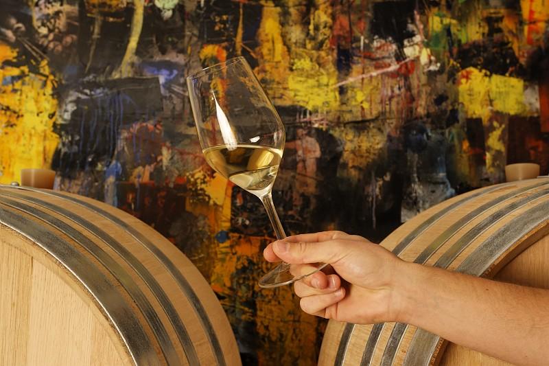 Parc de Fierbois: Wines and Vineyards Degustation E Mangeat 0027