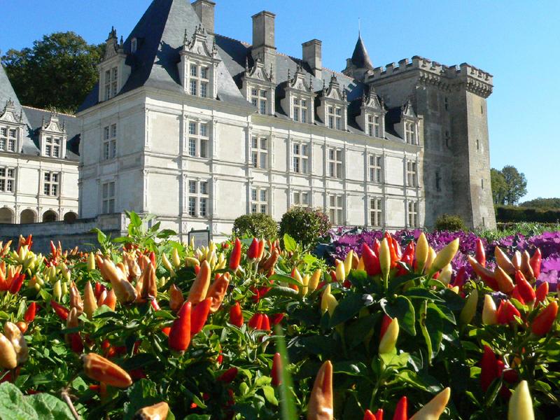Parc De Fierbois : Chateau Villandry