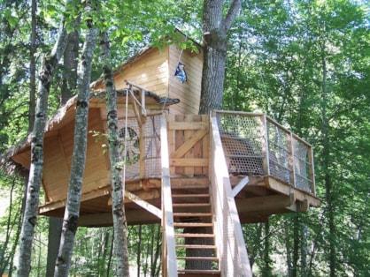 Cabane dans les arbres en Indre et Loire