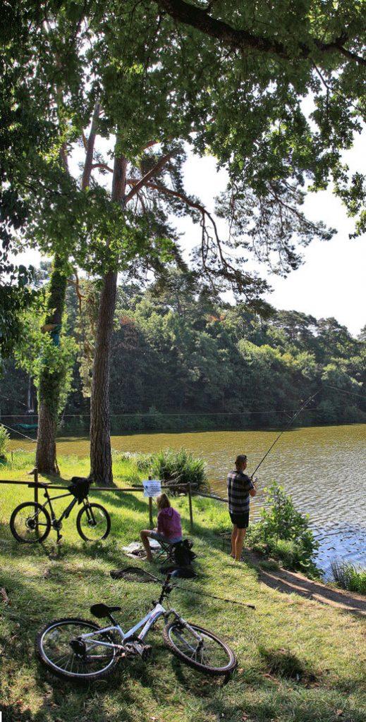 Parc De Fierbois : 13 Fierbois Lac Cropped